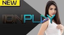 IDN LIVE (Live Casino IDN)